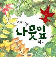 (웅진 지식그림책 20)내가 만난 나뭇잎 하나